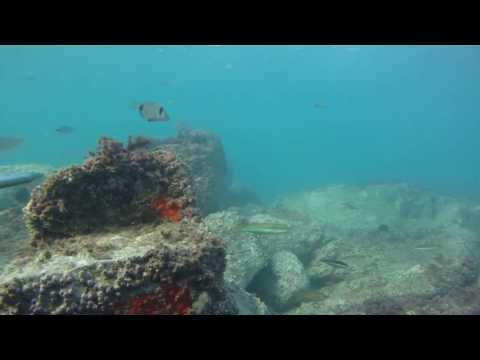 Müjdat TURAN Levrek avları 5. bölüm
