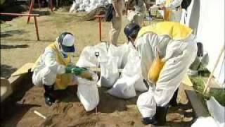 土壌除染作業について 石井慶 検索動画 24