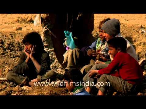 Gang of rag pickers boys : Delhi