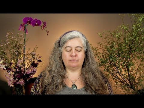 Excerpt from Accessing Your Past Life Memories and Other Records with The Pleiadian Collective with