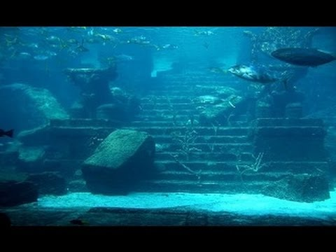Sunken Treasures and Golden Riches of American History (DOCUMENTARY)