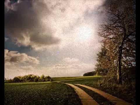 Spring Rain by Hojoon Lee