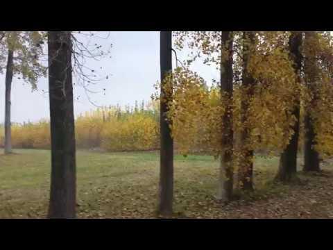 Wonderful start of autumn in Belgium