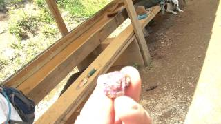 RelyLocalAsheville.com Video: Rockhounding at Mason Mountain Mine in Franklin NC