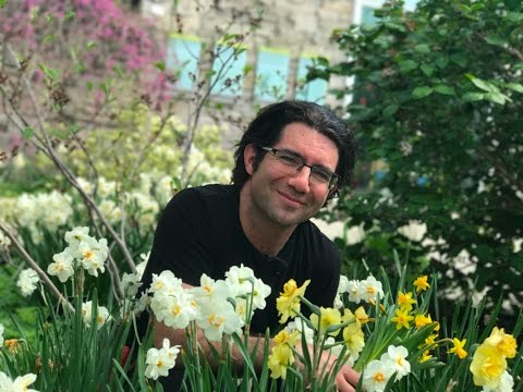Gardening Tips with Paul Zammit: Spring Flowering Bulbs