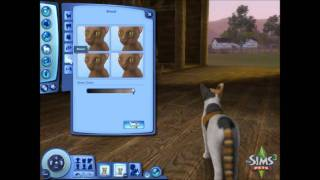 Sims 3 Pet Creation Demo - #TS3Pets