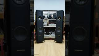 Sonus Faber With 300B PP-1