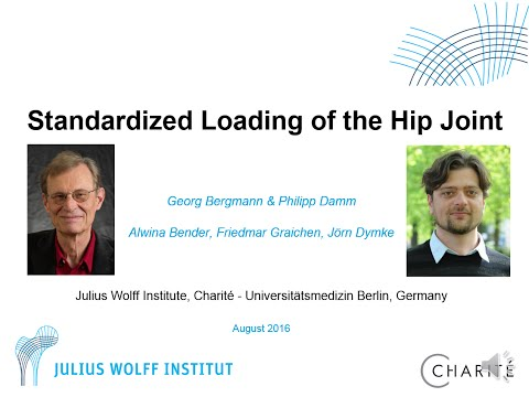 Standardized Loading of the Hip Joint