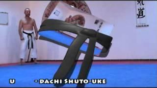 Karate: kokutsu-dachi