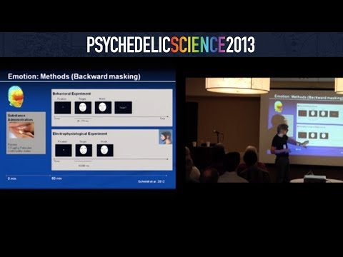 Neuroscience of Psychedelics Workshop - Part 4/4