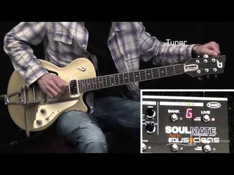 T REX Soulmate - multi-effet guitare pédalier