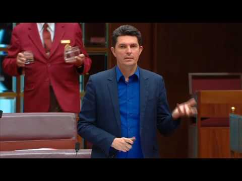 Senator Scott Ludlam (Greens) on copyright law, disability rights, fair use, and safe harbours