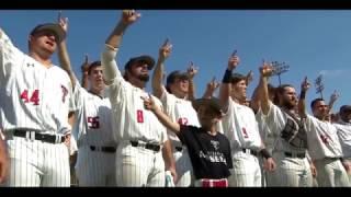 Baseball Hype 2017