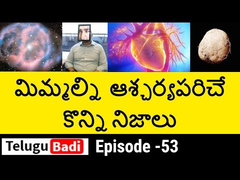 Top 10 Interesting Facts in Telugu You Never Know | Unknown and Amazing Facts | Episode – 53