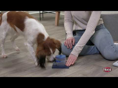 TRIXIE Heimtierbedarf - Dog Activity Strategiespiel Poker Box 2
