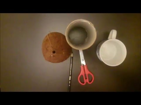 Handmade Small things cup from Coconut :) Kokosinis indelis