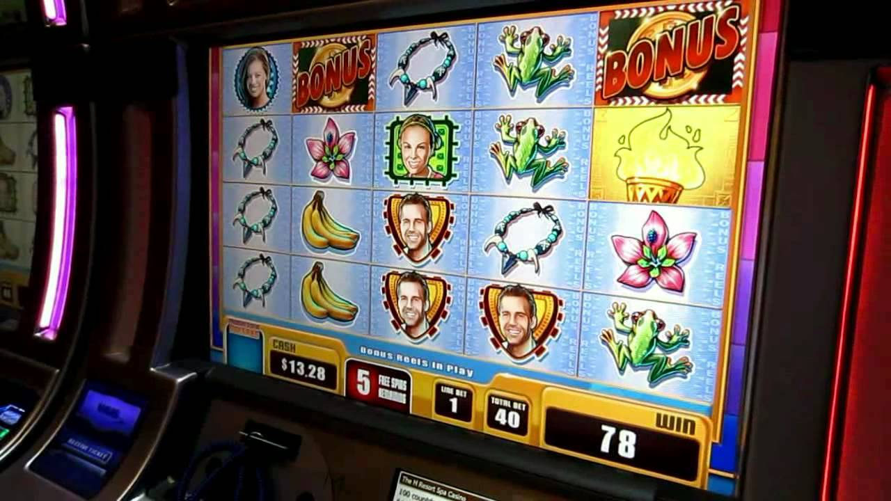 Survivor casino slot game the aladdin casino las vegas