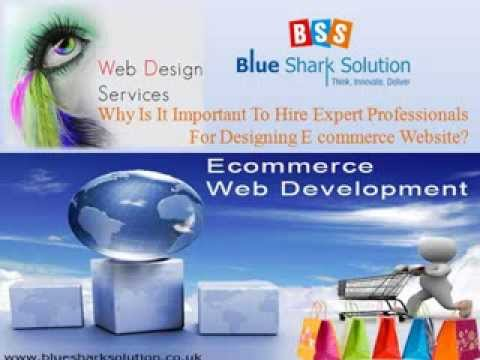 Why is it important to hire expert professionals for designing ecommerce website?