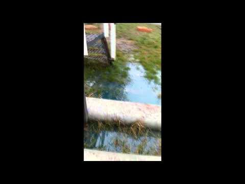 Авария на Одесском НПЗ: при перекачке нефти лопнула труба
