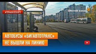 Автобусы «Бигавтотранс» не вышли на линию