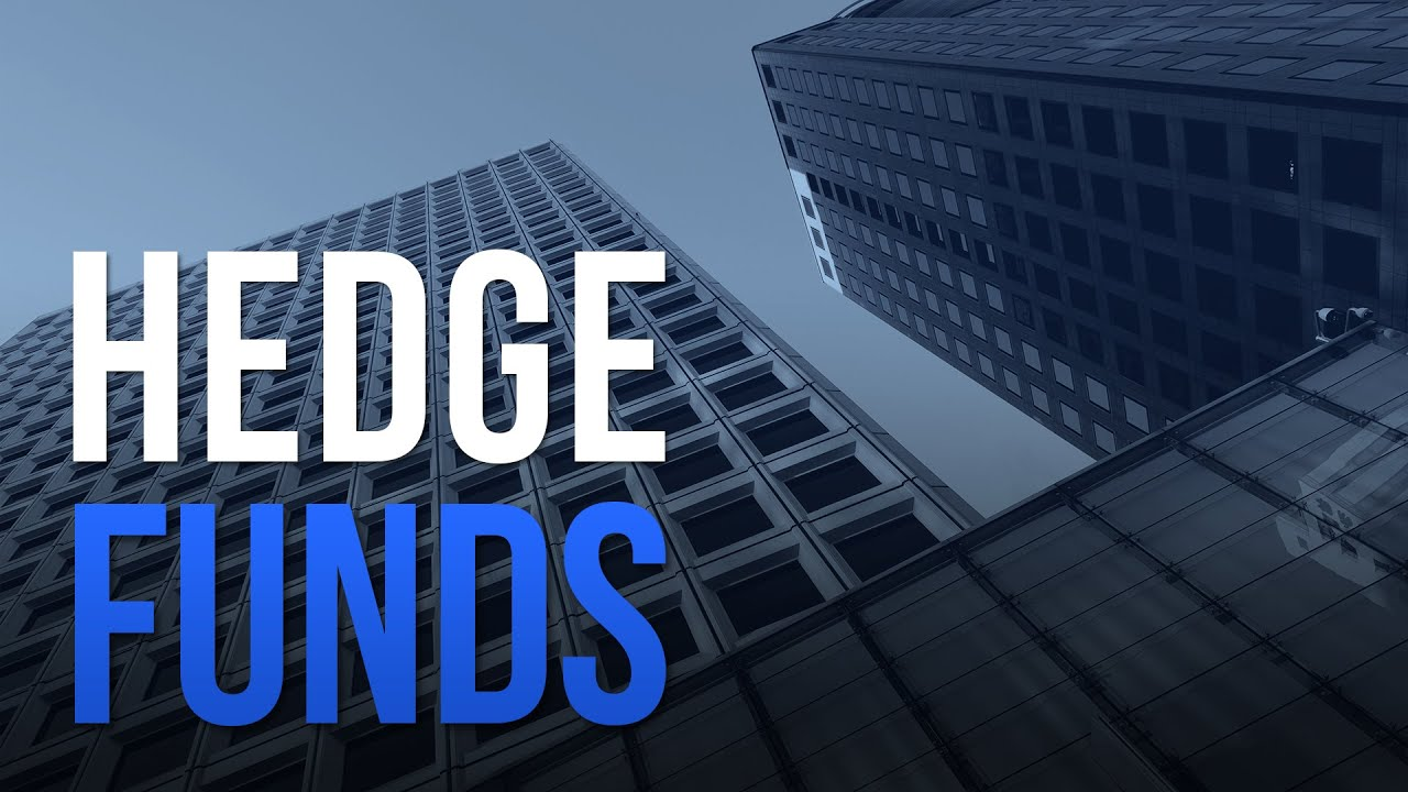 Download What Do Hedge Funds Actually Do? Introduction to Hedge Funds