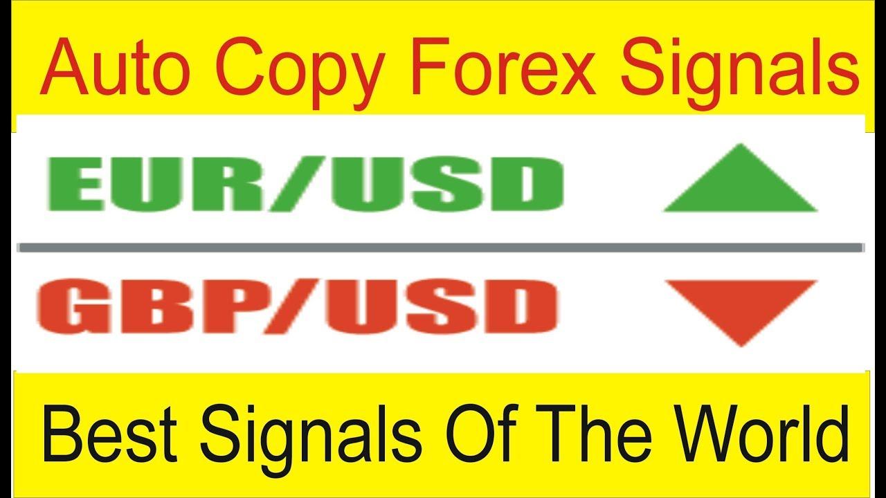 Direct forex signals