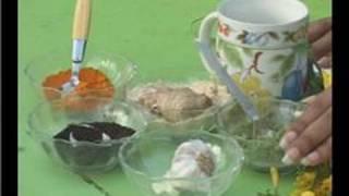 Herbal Plant Remedies : Herbs: Echinacea