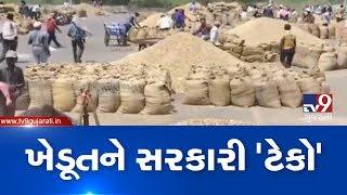 Rajkot : Farmers reach market yards to sell groundnuts at MSP | TV9GujaratiNews