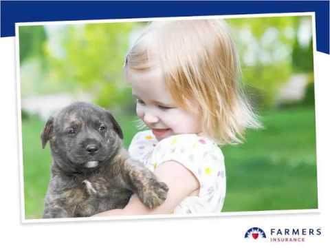pet insurance united states