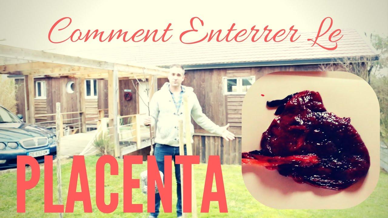 placenta comment planter un arbre fruitier millie. Black Bedroom Furniture Sets. Home Design Ideas