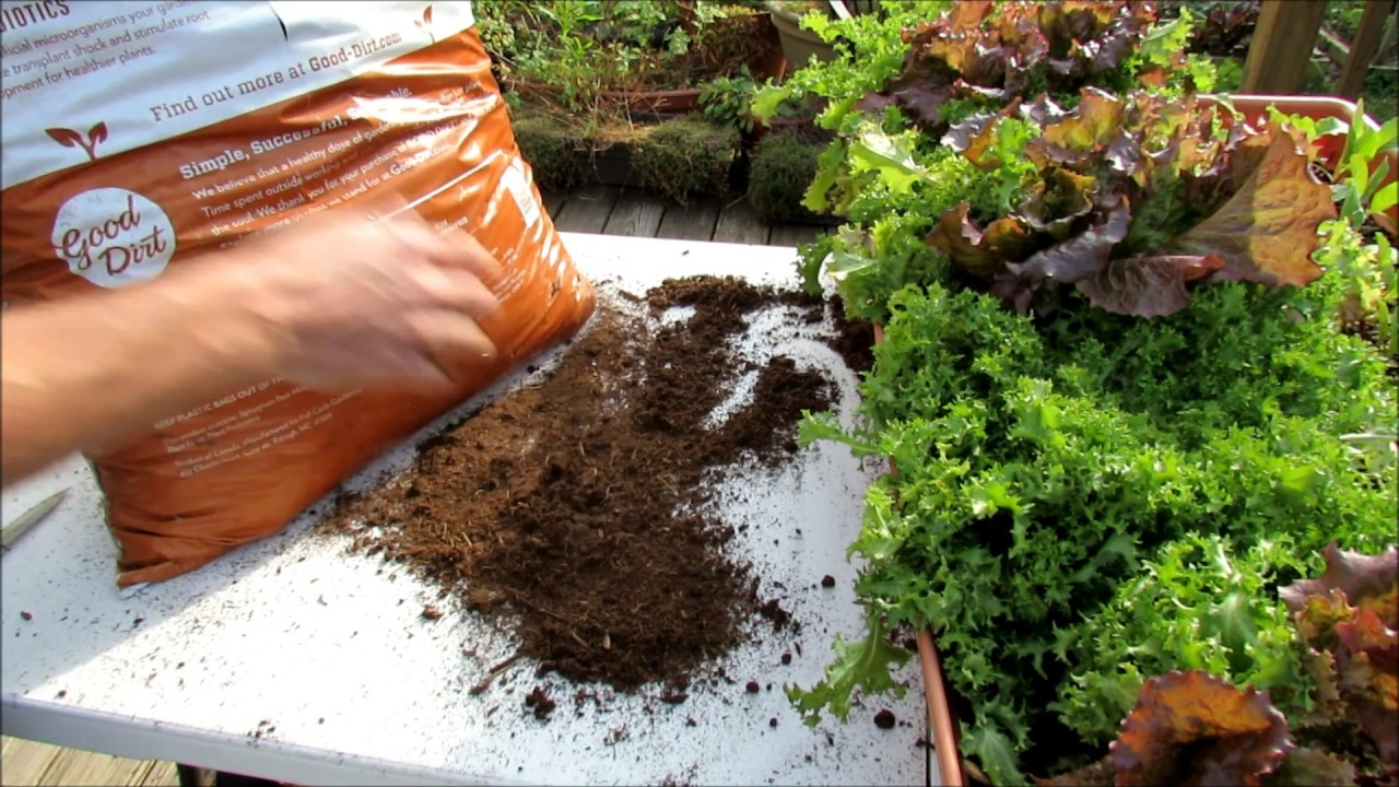 container gardening soil mix