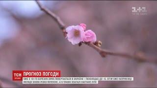 В Україну повернеться зима