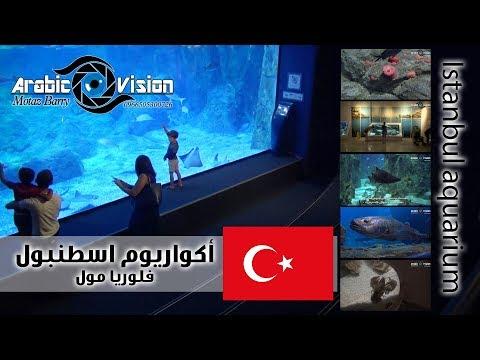 أكواريوم إسطنبول | Istanbul aquarium | فلوريا مول | البيئة البحرية | تركيا