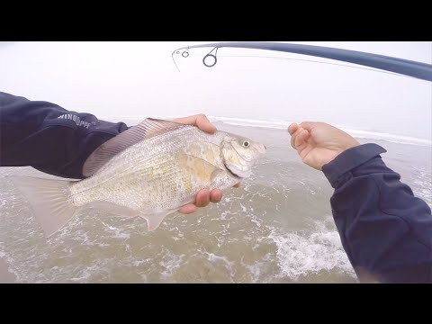 oregon coast surf fishing outgoing high tide