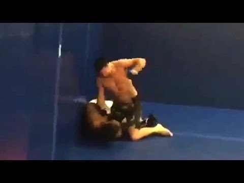UFC Veteran Josh Neer Beats up Heckler at Gym