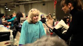 Old English Sheep Dog   Victoria Stilwell At Westminster Dog Show