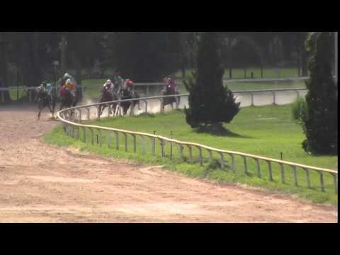 ม้าแข่งสนามเชียงใหม่ วันเสาร์ที่ 11 กรกฎาคม 58 (รวมทุกเที่ยว)