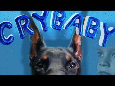 Practicing More Dog Tricks   Derek554 Daily Vlog #6
