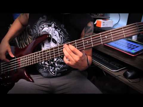 Avenged Sevenfold - Afterlife (Bass Cover Tribute by Gustavo Amaro)