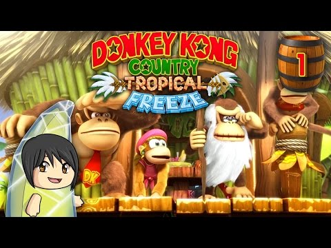 Download Youtube: LP #18: Donkey Kong Country Tropical Freeze [FINISHED]