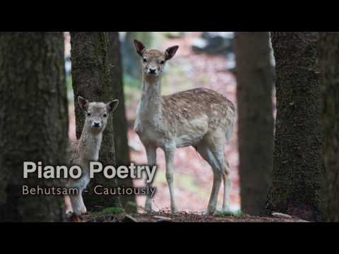 Piano Poetry - Cautiously by Michael Proksch