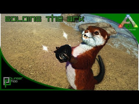Soloing the Ark S4E50 - OTTER! WHERE TO FIND AND HOW TO TAME!