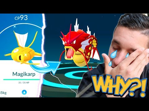 EVOLVING TO A SHINY GYARADOS AND GUESS WHAT HAPPENED! THE CURSE STRUCK AGAIN...