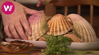 Galicia - For All who Love Seafood (Spain) | What's cookin'