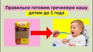 Правильно готовим гречневую кашу детям до 1 года