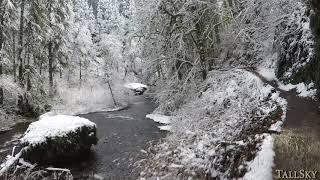 Virtual Hike: Snow, Silver Falls State Park, Oregon 1 Hour