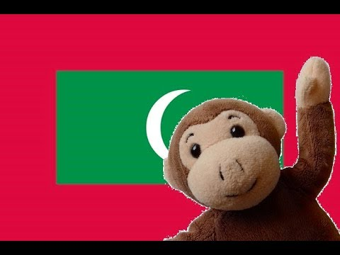 Globe Monkey goes to the Maldives