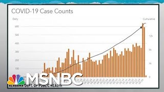 Coronavirus Crisis A National Story Made Of Local Outbreaks | Rachel Maddow | MSNBC