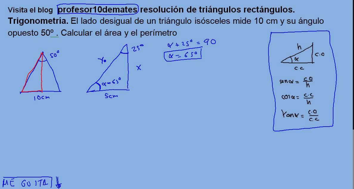 razones trigonometricas de un triangulo rectangulo ejercicios resueltos pdf