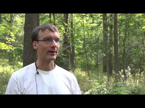 Cootes to Escarpment EcoPark System Film
